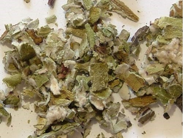 Picture of Coltsfoot Leaf (25g) - Magical Herb