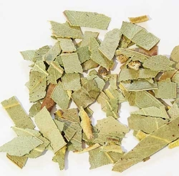Picture of Eucalyptus Leaf (25g) - Magical Herb