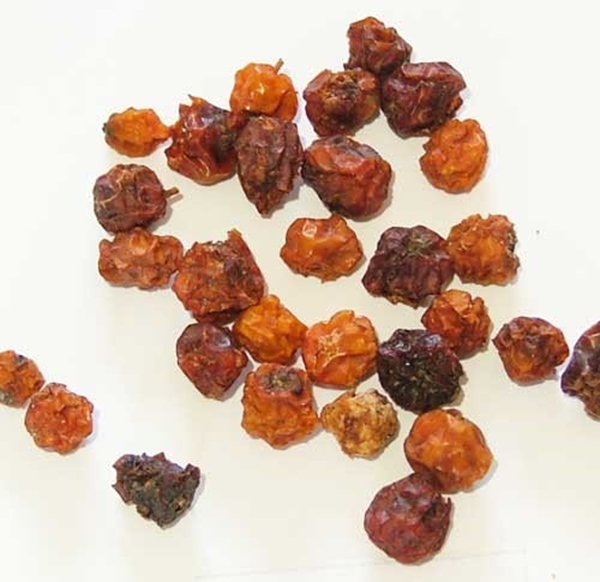 Picture of Mountain Ash (Rowan) Berries (25g) - Magical Herb