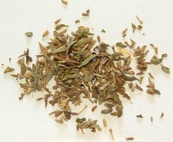 Picture of Pennyroyal (25g) - Magical Herb