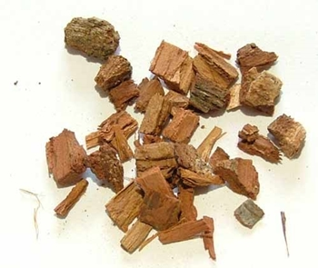 Picture of Oak Bark (25g) - Magical Herb