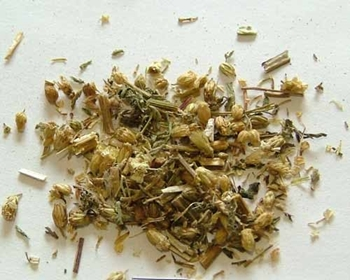 Picture of Yarrow (25g) - Magical Herb