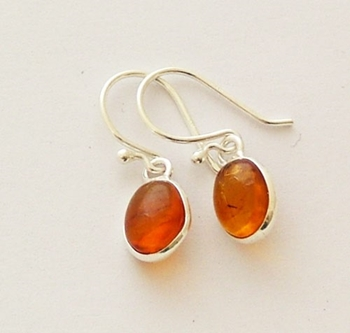 Picture of Amber Earrings - Sterling Silver