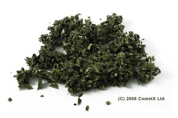 Picture of Raspberry Leaves (25g) - Magical Herb