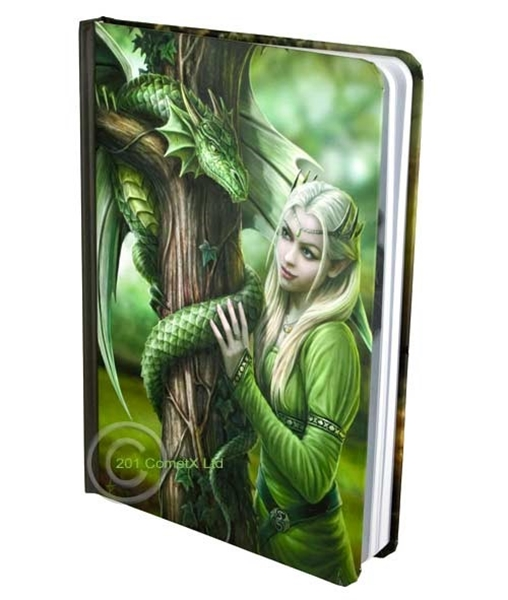 Picture of Green Dragon Journal
