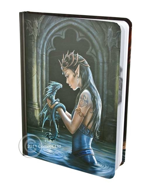 Picture of Water Dragon Journal