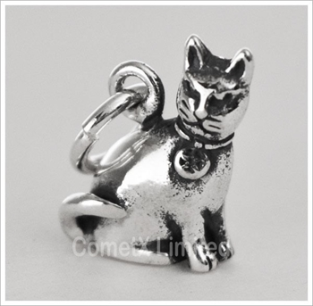 Picture of Pagan Cat Charm