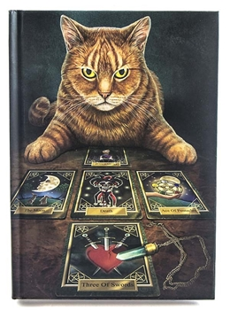 Picture of Book Of Shadows - The Reader