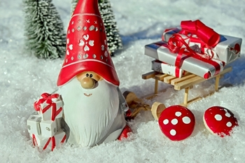 Christmas Selection Fragrance Sample Blocks Image