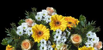 Floral Selection Fragrance Sample Blocks Image