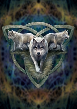 Wolf Trio Greetings Card Image